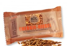 Bug Break Lesser Mealworm